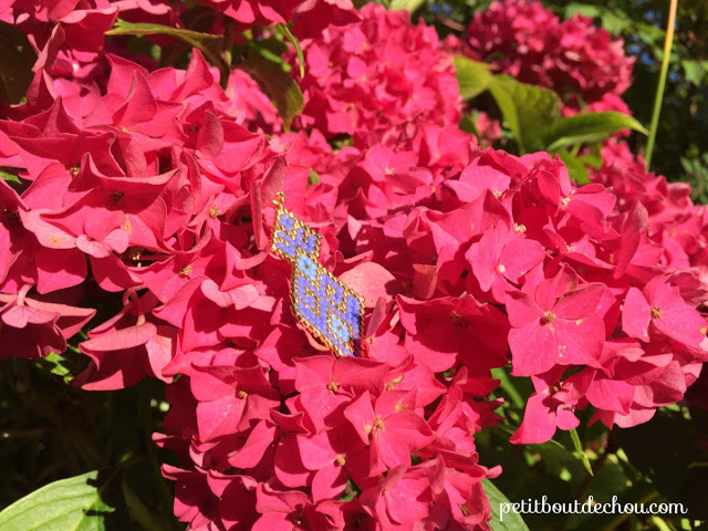 earring in the hydrangea