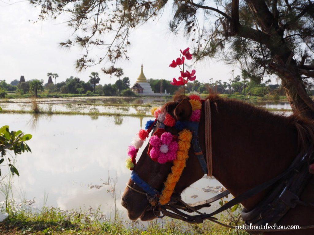 Inwa horsecart promenade