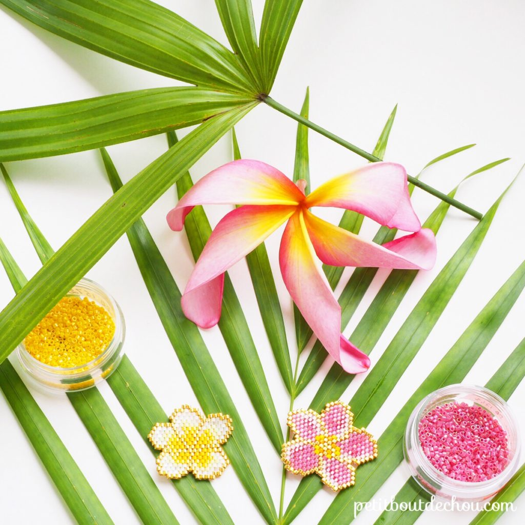 Instagram tropical miyuki contest