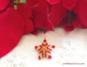 Etoile 3D Noel title (2)